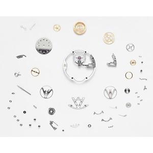 路易威登发布日内瓦印记飞行陀飞轮腕表