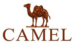 camel是什么意思